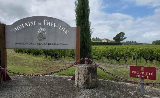 【ワイン買取】通好みのワイン『ドメーヌ・ド・シュヴァリエ 赤』を買取いたしました。お酒買取実績紹介! 5