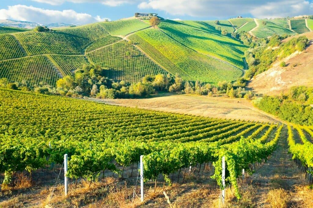 【ワイン買取】ボルドーワインの頂点『シャトー・ラフィット・ロートシルト1992』を買取いたしました。お酒買取実績紹介! 3