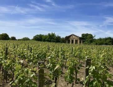【ワイン買取】通好みのワイン『ドメーヌ・ド・シュヴァリエ 赤』を買取いたしました。お酒買取実績紹介! 1